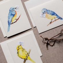 Bluebird of Happiness_3