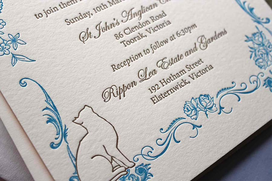 feline invitation set
